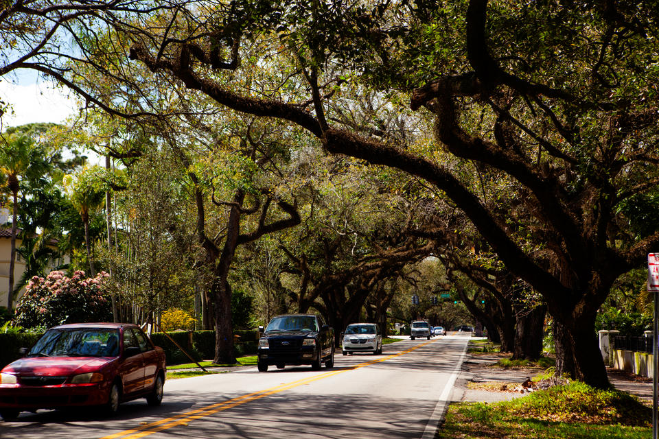 Coral Gables Street